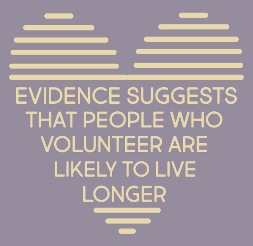 Vintage Volunteers infographic 6